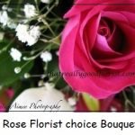 6florist choice roses